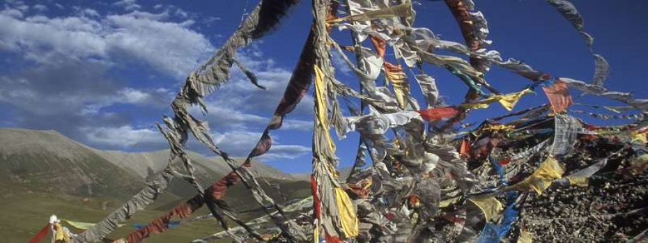 32070-prayer flags 800x300 60